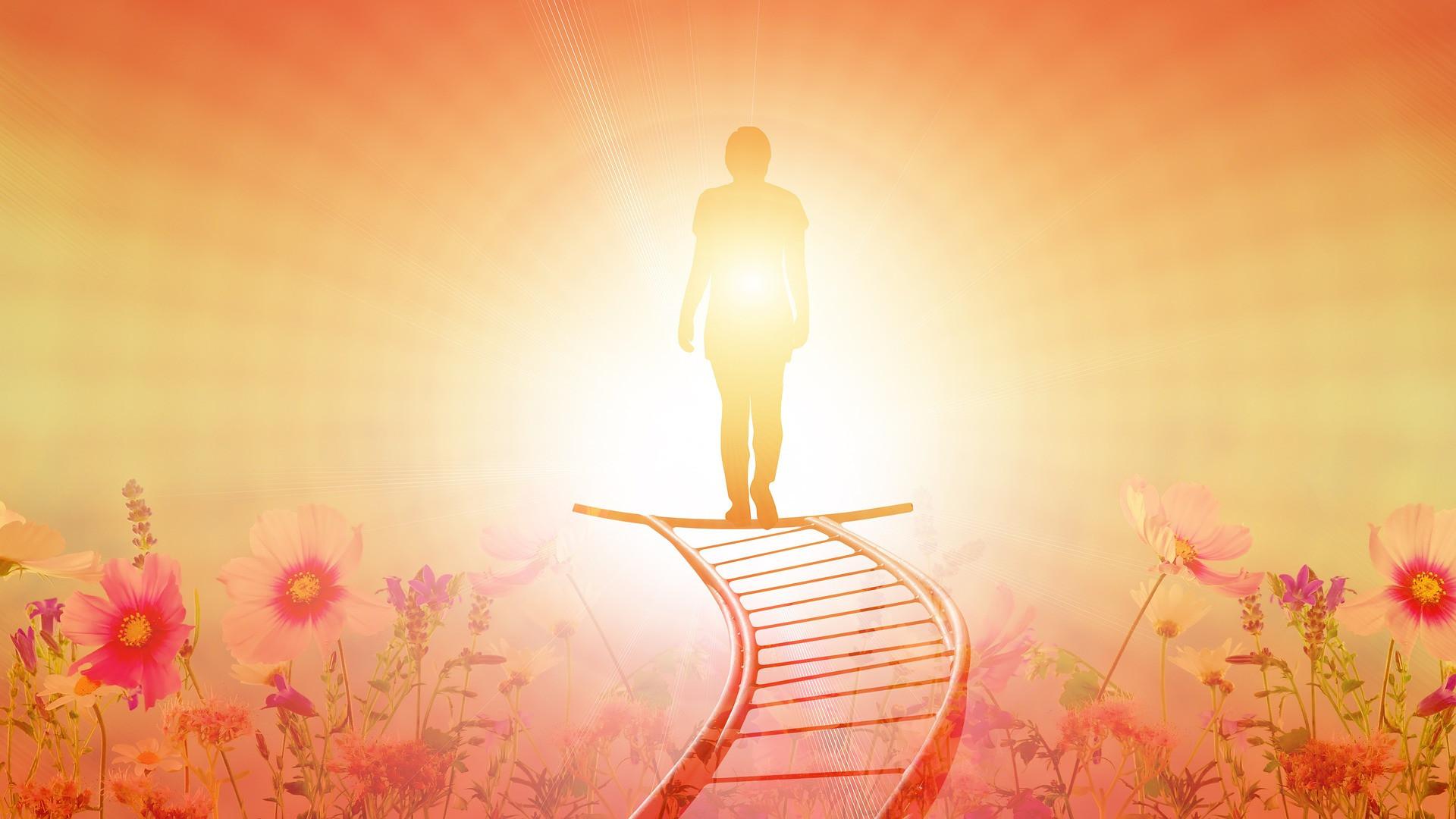 Как научиться побеждать – 7 шагов к успеху