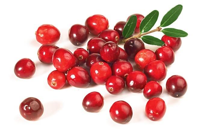 Одна из самых полезных ягод. Она и в замороженном виде не утрачивает витаминов. Помимо аскорбинки, в составе клюквы есть довольно редкий витамин РР. Он способствует усвоению витамина С, п...