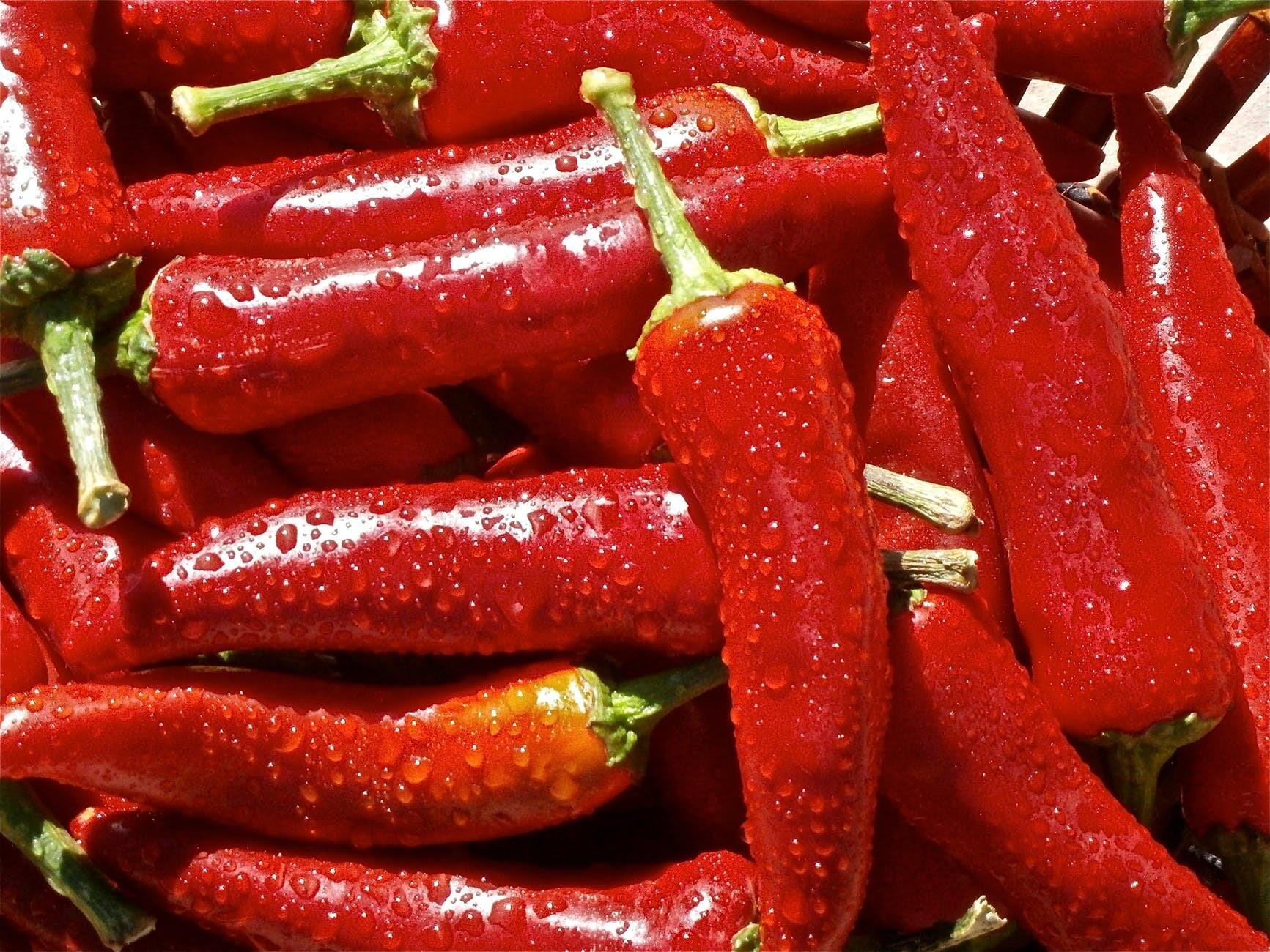 Быстрое пищеварение и низкое давление: чем полезен перец чили
