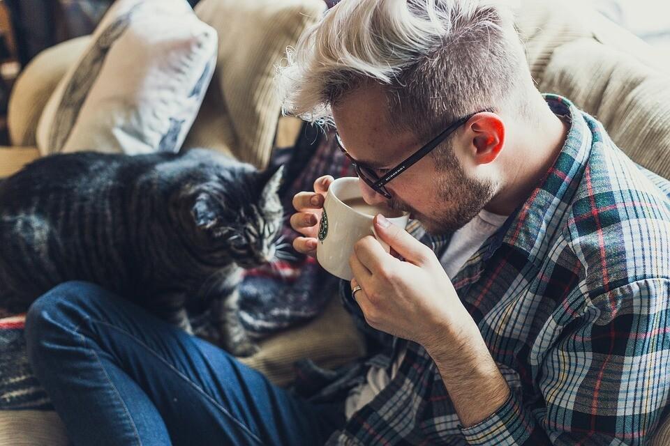 Уйди, противный! Как кот влияет на твою сексуальную жизнь