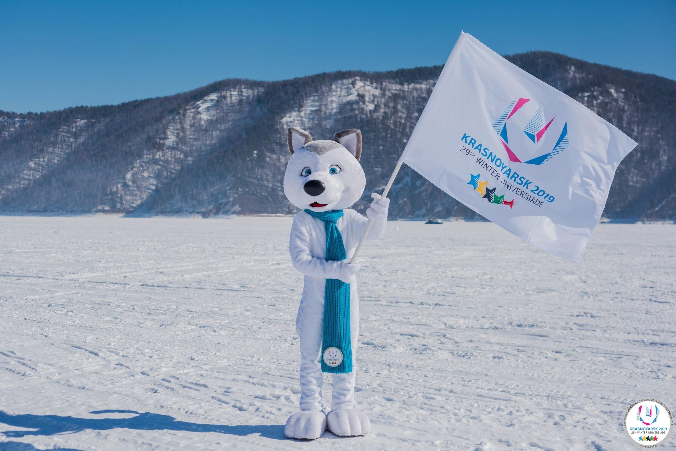 Знакомься, это талисман Зимней универсиады-2019, его зовут U-лайка. Прообразом послужили умные иверные сибирские лайки.