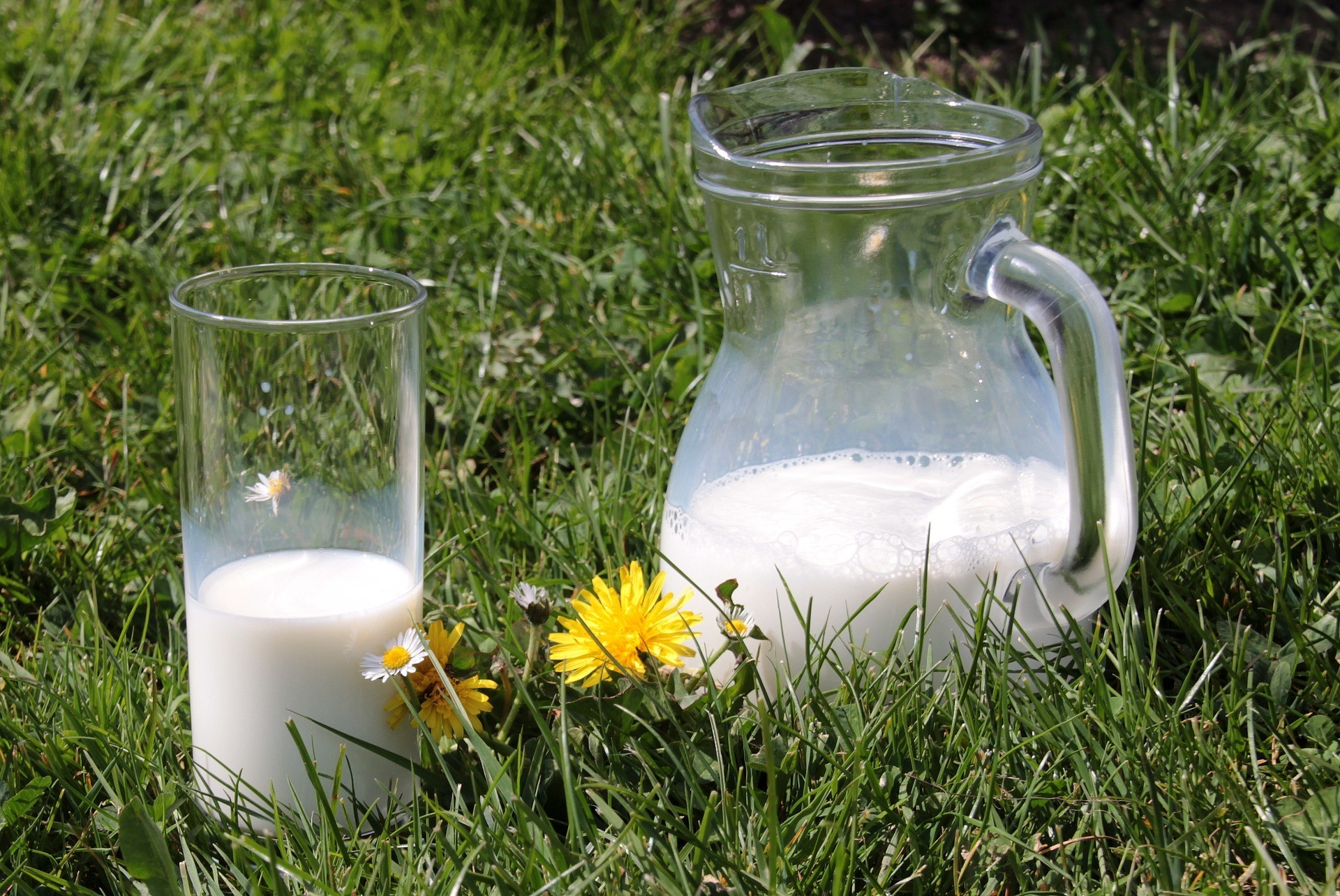 Отличный способ сэкономить: молочная кухня 2019