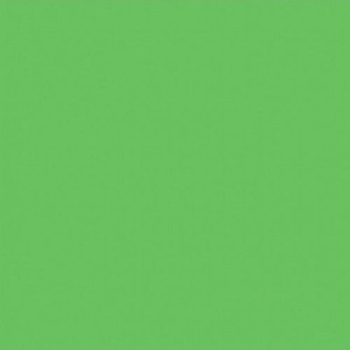 Символ весны, молодости, созревания ироста. Он воплощает истинную любовь изаботу. Яркий исочный зеленый говорит одуховном, физическом иэмоциональном возрождении. Ростки изелень втв...