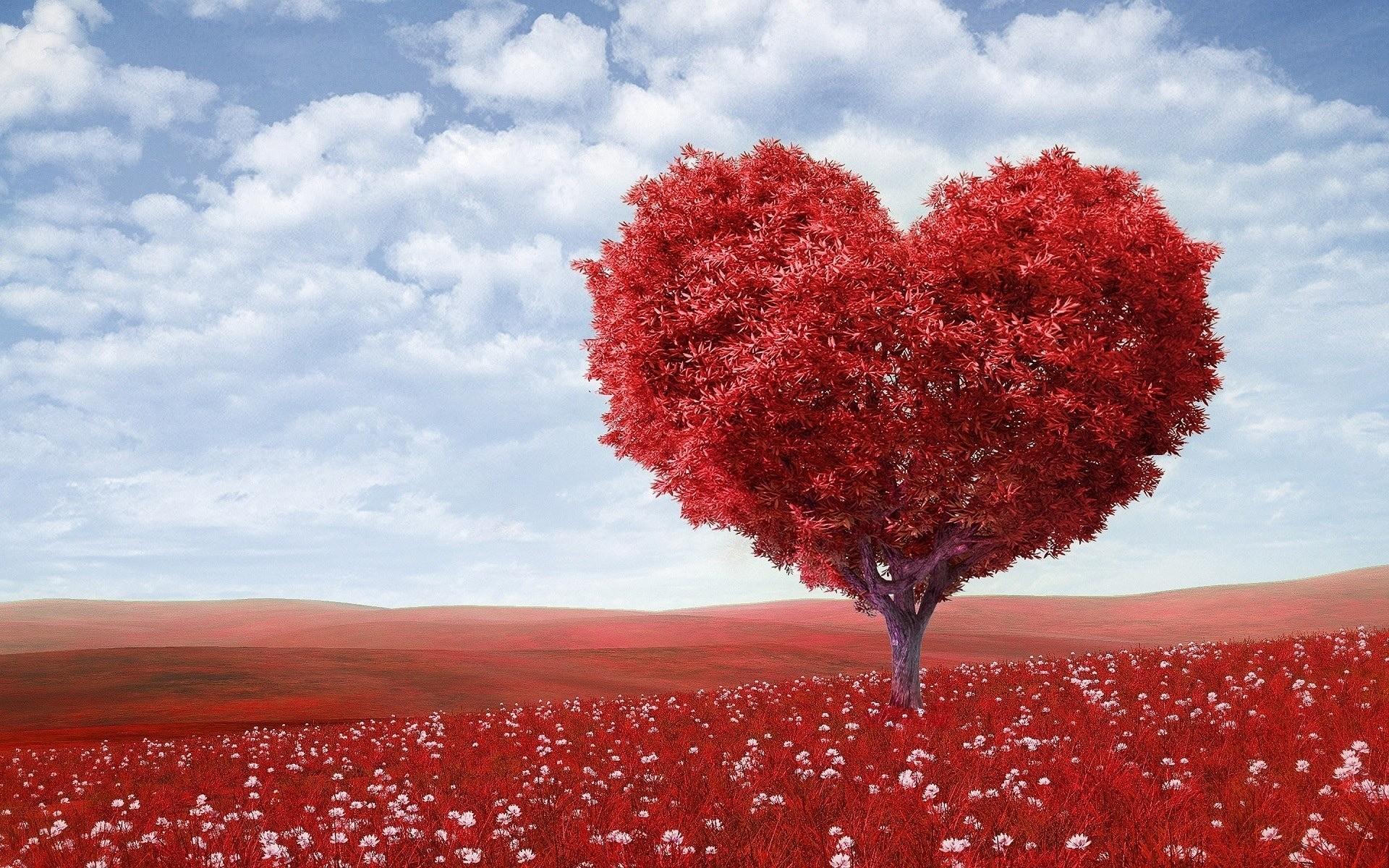 12 мелочей, которые доказывают, что он серьезно относится к вашим отношениям