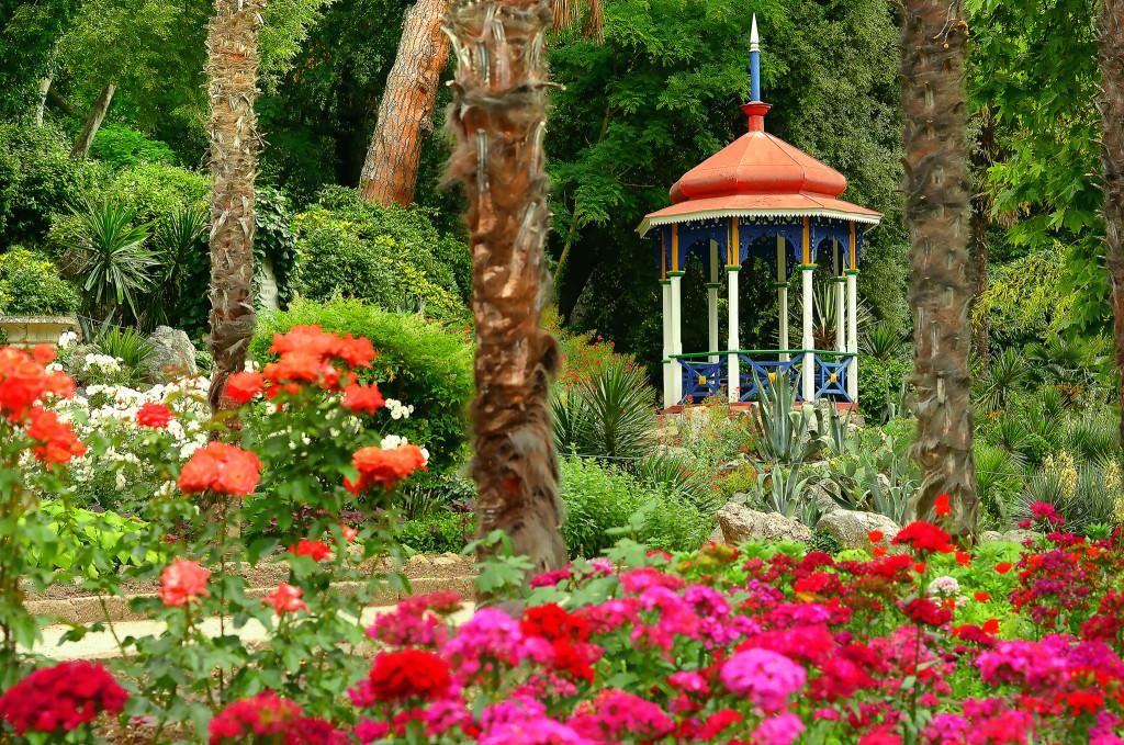 Никитский ботанический сад. Фото: Legion-Media
