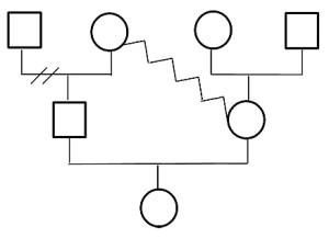 генограмма