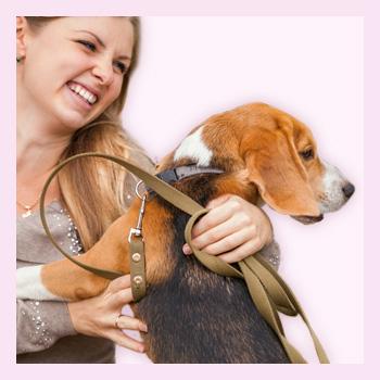 Животные и беременность