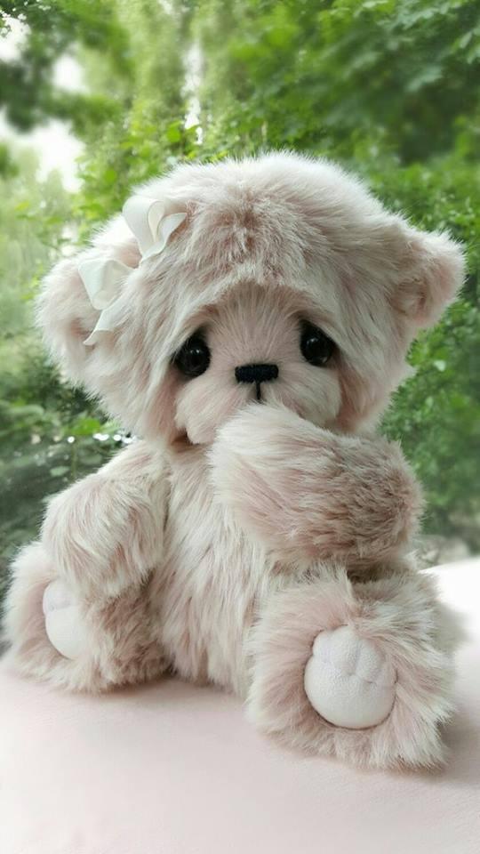 hello_teddy_4