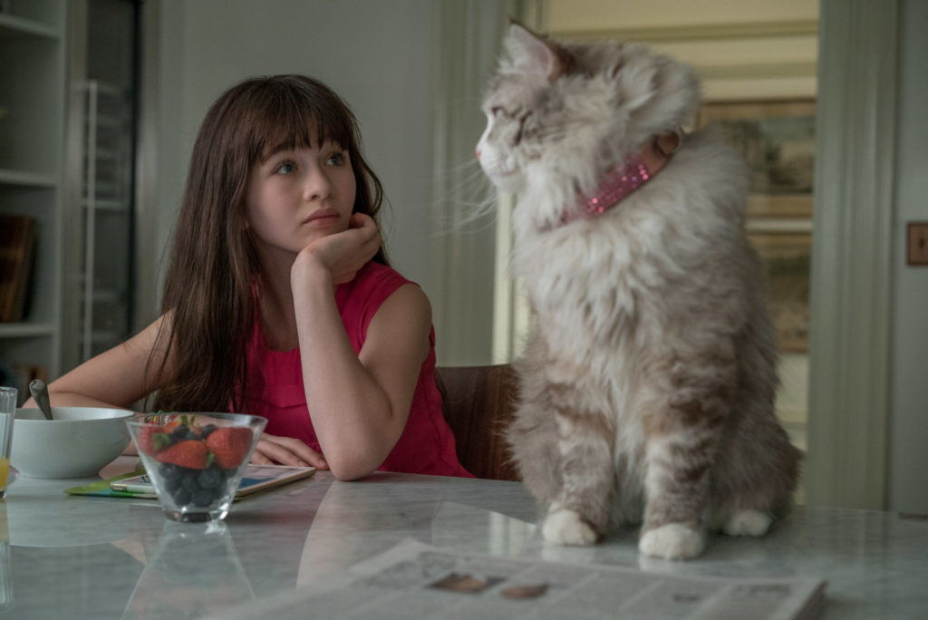 10 фильмов 2016 года, которые надолго запомнятся