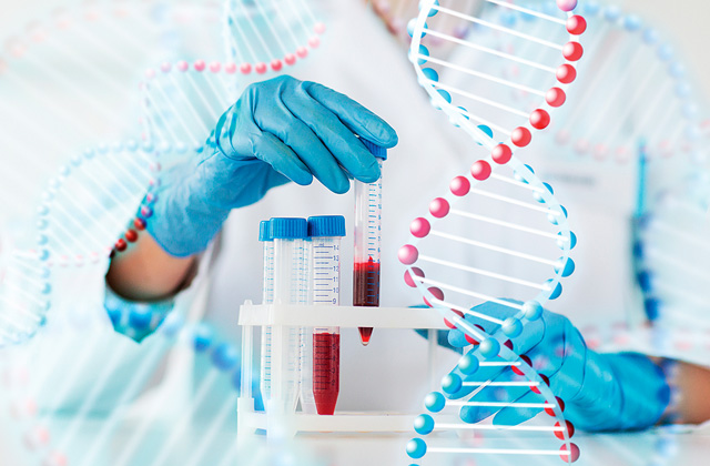 Связаны одной цепью: все самое интересное о ДНК человека