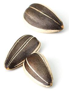 5 фактов о пользе подсолнечных семечек