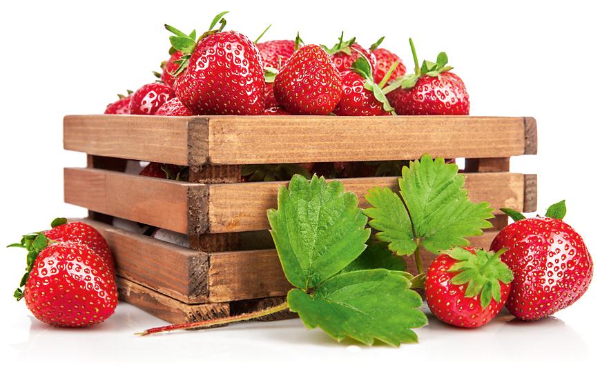 Топ-7: самые полезные ягоды длявашего здоровья