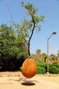 7 вещей, которые нужно успеть сделать вТель-Авиве