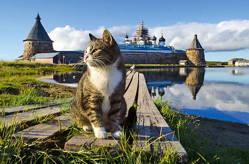 Топ-10 объектов ЮНЕСКО в России, которые надо посетить