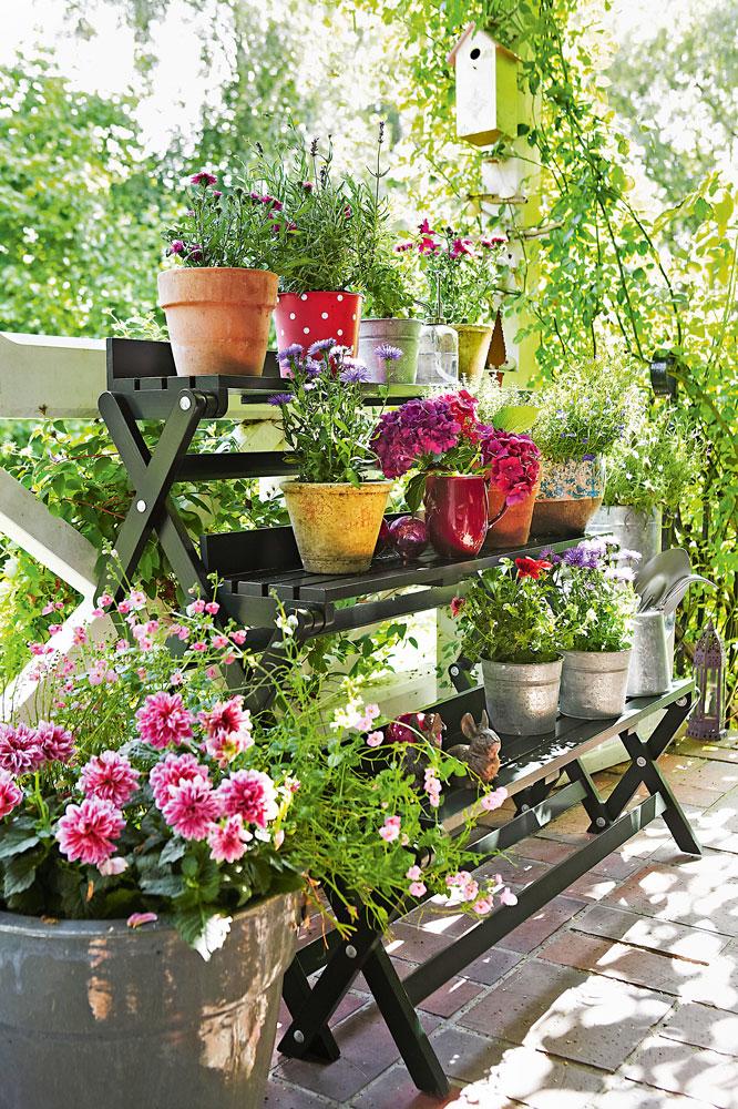 Как разбить сад на участке всего за несколько часов