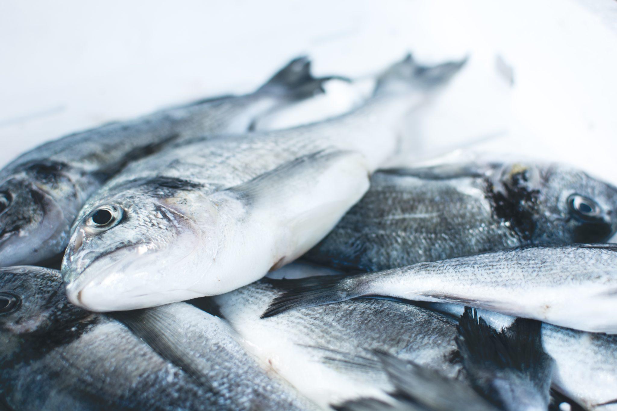 Как правильно выбрать рыбу, мясо и овощи зимой?
