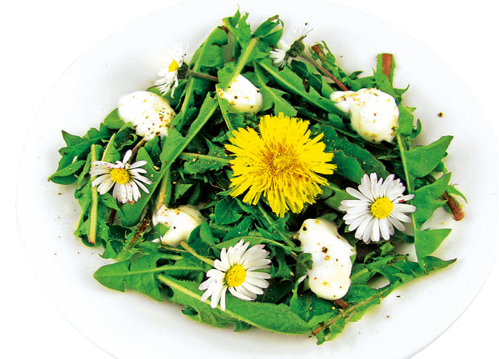 4 полезных рецепта с весенними травами