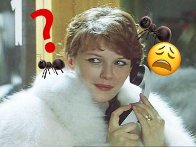 5 «любимых» тараканов в голове у русских женщин