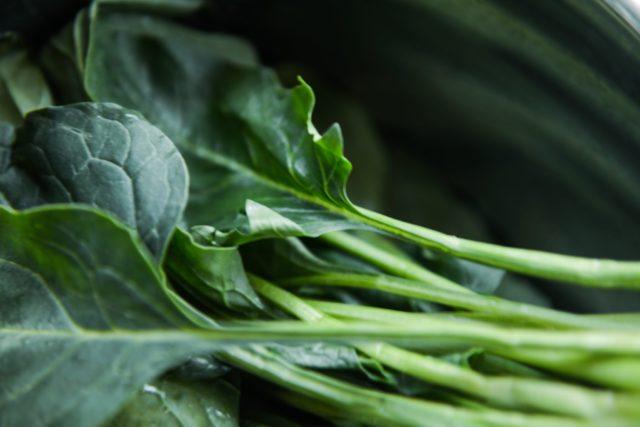 9 продуктов, которые полезно есть в пророщенном виде