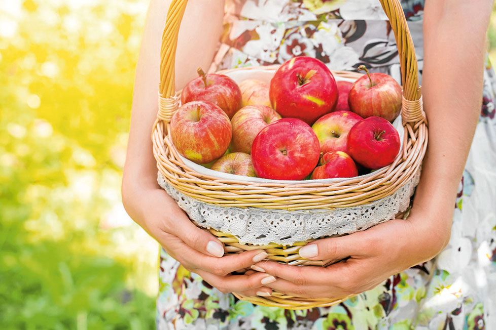 Яблочная диета: минус 3 кг за5 дней. Меню надень